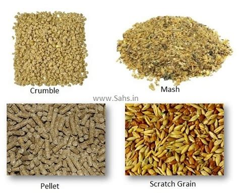 what type of feed is suitable for chickens of different