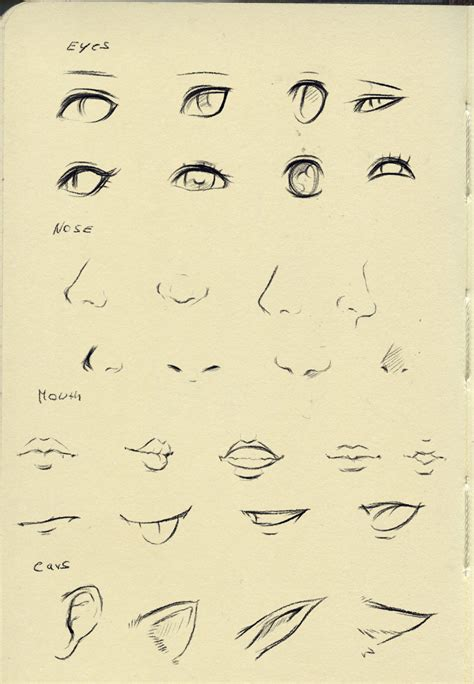 anime eyes nose reference eyes nose mouth ear by ryky on deviantart