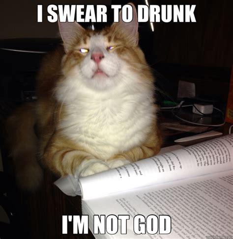 Drunk Cat Meme - i swear to drunk i m not god drunk cat quickmeme