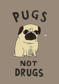 pugs and drugs pugs on pug black pug and pug puppies