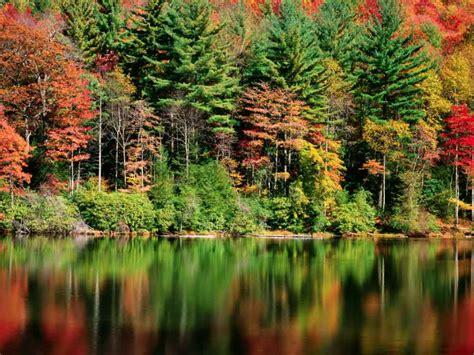 imagenes naturaleza otono los colores del oto 241 o reflejos ocres en el agua del lago