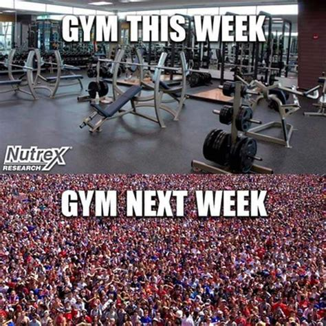 New Years Gym Meme - best 25 new years resolution funny ideas on pinterest
