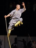 Image result for What is The Deadliest Martial Arts?