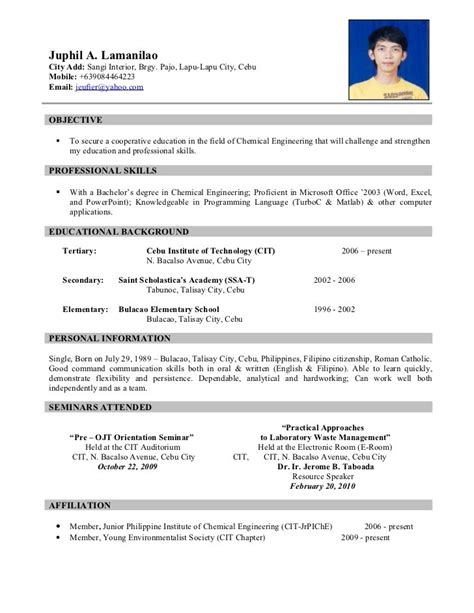 Best Example Of Resume Format by Resume Sample 10 Resume Cv