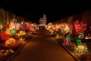 panoramio photo of christmas lights at denver botanical