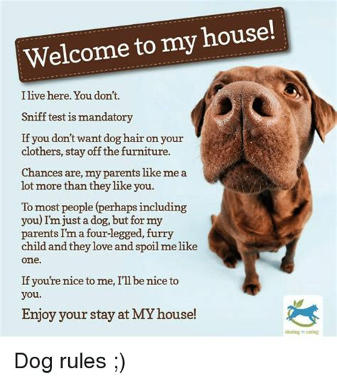 welcome to my house rules dog welcome to my house ilive here you don t sniff test is