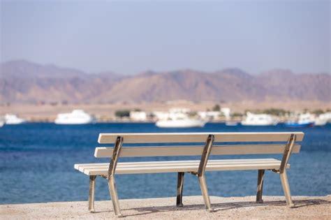 foto di panchine panchina in riva al mare scaricare foto gratis
