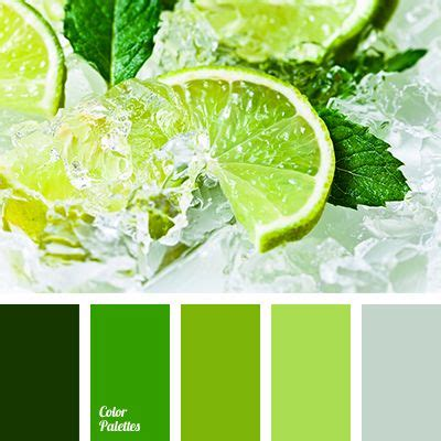 what color matches green asparagus color color match color palettes for decor