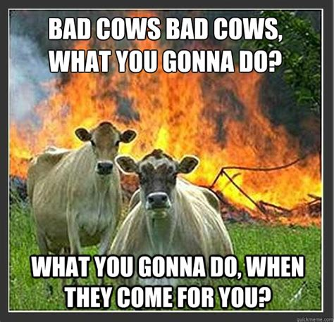What You Gonna Do Meme - bad cows bad cows what you gonna do what you gonna do