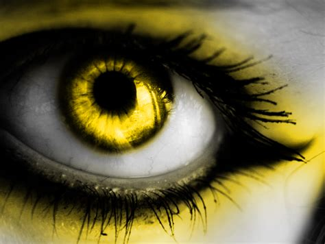 yellow eye color color me yellow eye by summon my soul on deviantart