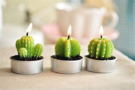 candele design these cactus candles will light up any room