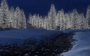 weihnachten bilder c