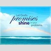 Happy Promise D...