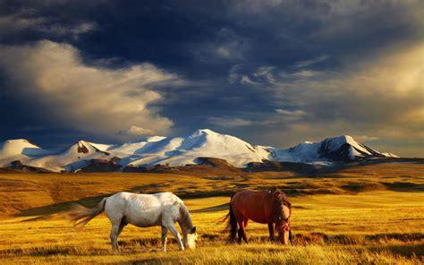 innere mongolei abenteuer durch die innere mongolei