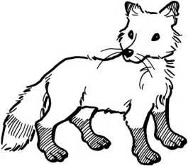 coloriage renard roux avec bout de queue blanche