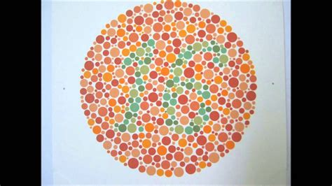 color blind song ishihara s test for colour deficiency 24 plates edition