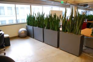 Plant Room Divider by Everything Grows Living Office Dividers