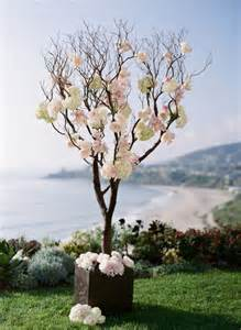 Wedding Tree Decorations by 1000 Images About Manzanita Branches Wedding Flowers On