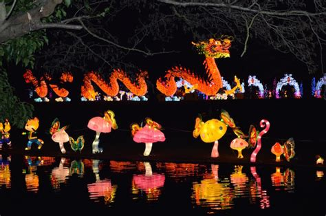 new year lantern festival chiswick house chiswick magical lantern festival is back londonist