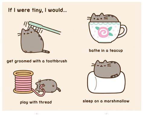 i am a cat books i am pusheen the cat book by belton official
