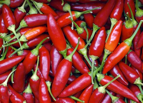 chili peppers new evidence that chili pepper ingredient fights
