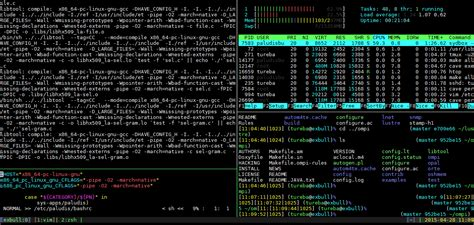 linux console who needs a gui how to live in a linux terminal