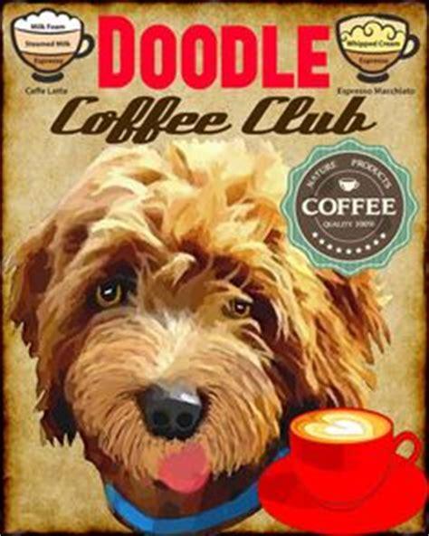 doodle puppy kopen kopen het eerste nederlandse boek de australian