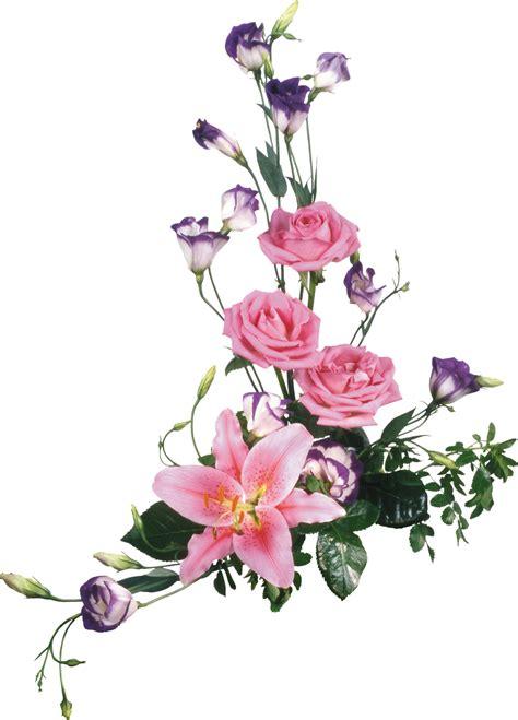 Imagenes En Png De Flores | im 225 genes de flores png gratis imagui