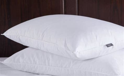 The Best Feather Pillows by Best Feather Pillow 2017 Reviews Guatemala Times