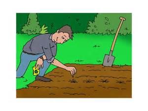 calendrier des semis et plantation des l 233 gumes