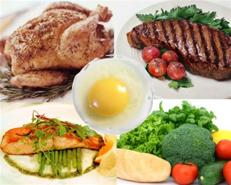 protein food protein rich foods and building