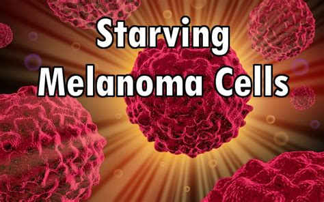 Spirulina Detox Thc by Scientists Starving Melanoma Cells Could Provide Future