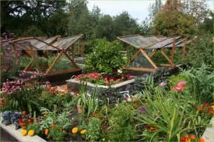 edible garden inspiration honeysuckle