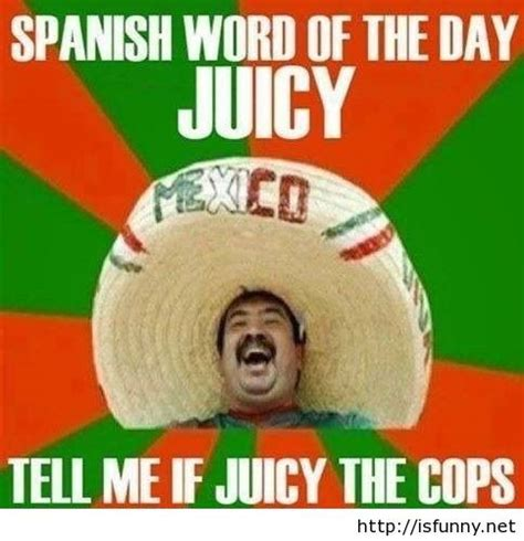 Hilarious Memes Pictures - 47 funny mexican quotes sayings about mexicans picsmine