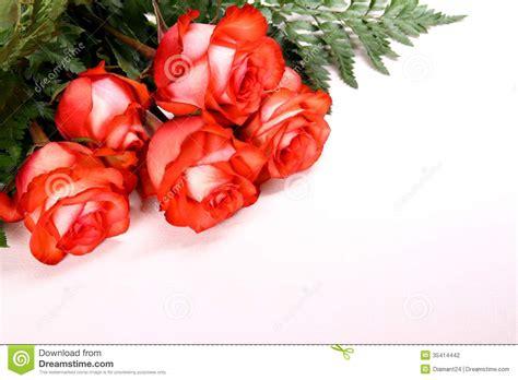 rosas para escribir pin espacio imagenes para hi5 comentarios on pinterest