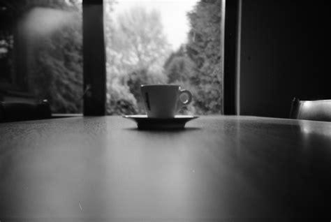 test sul carattere aforisma con caff 232 joseph and edna josephson