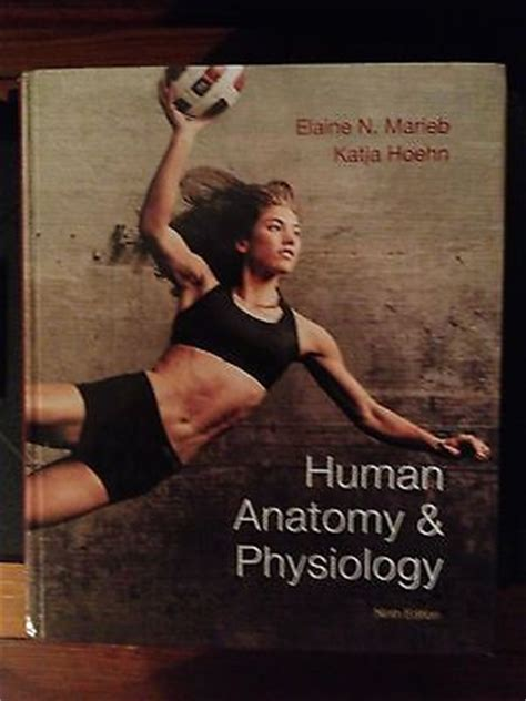 human anatomy 9th edition 1000 images about my ebay on