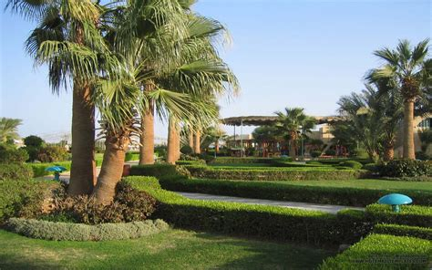 Palm Gardens by Palm Garden Free Html E Mail Templates