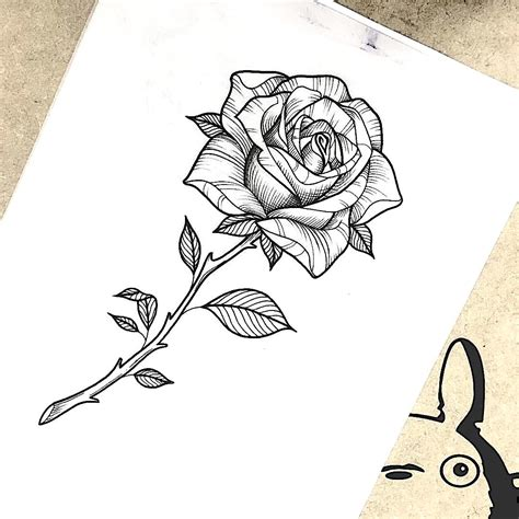 tattoo of rose flower flora linework nacl4 linework