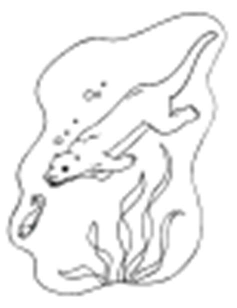 Alphabet Letter O Otter Preschool Lesson Plan Printable