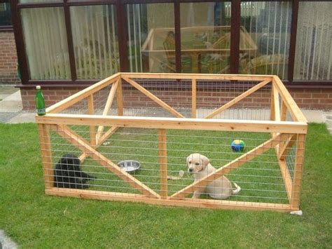 rabbit play yard pet pen buns plays