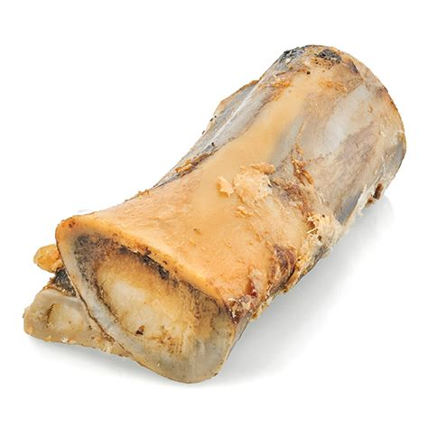 marrow bones for dogs large marrow bone for dogs best bully sticks