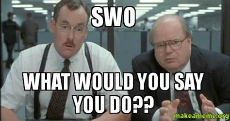 What Would You Do Meme - swo what would you say you do make a meme