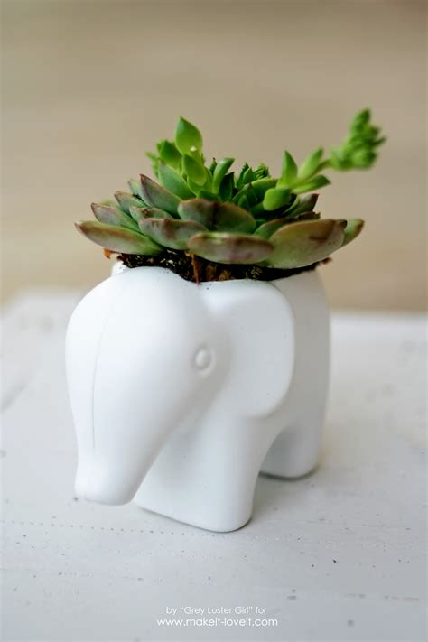 how to make a succulent planter diy toy elephant succulent planter make it and love it