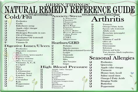 medicinal herb chart herbalism medicine green tidings natural remedy reference guide refrigerator