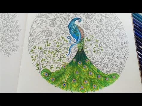 secret garden coloring book outfitters peacock part 3 3 secret garden coloring book