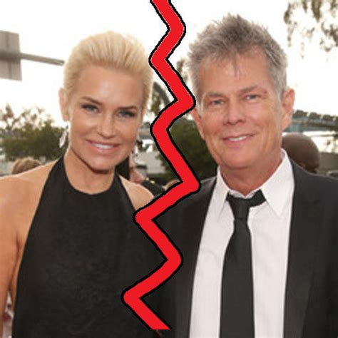 how did yolsnda foster meet david foster yolanda foster and david foster getting divorced