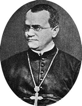 biography gregor mendel gregor mendel father of genetics a brief biography