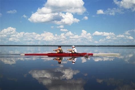 sculling boat painting gator pair row2k rowing photo of the day