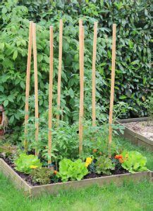 preparing soil for a vegetable garden your foundation